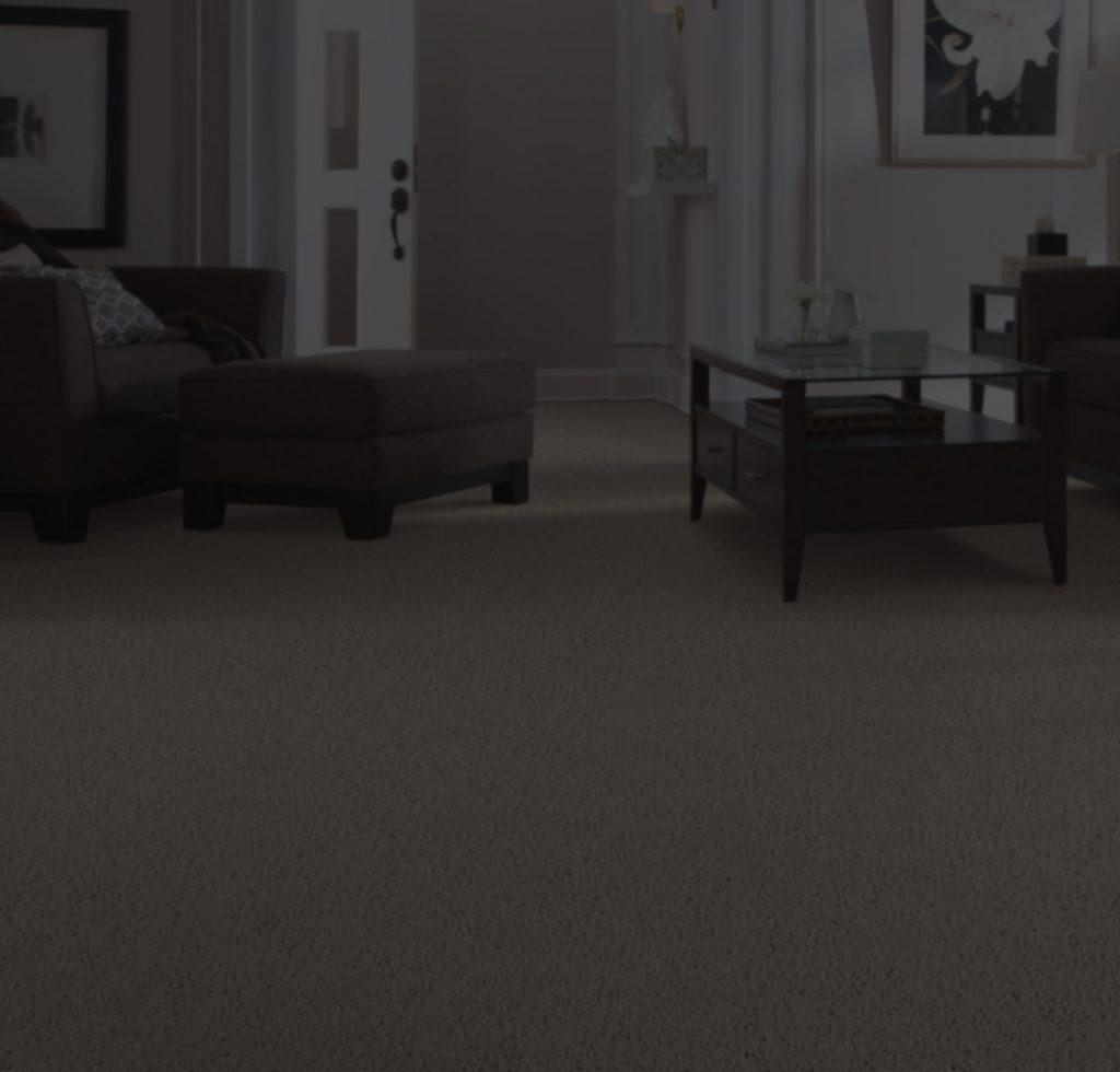 Carpet Installation | IQ Floors