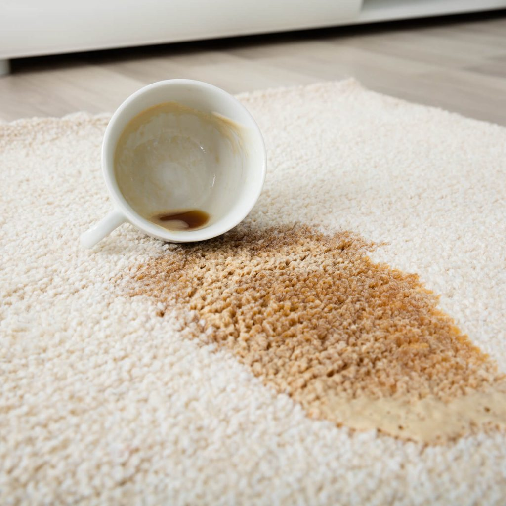 5 Signs it's Time for a Professional Rug Cleaning